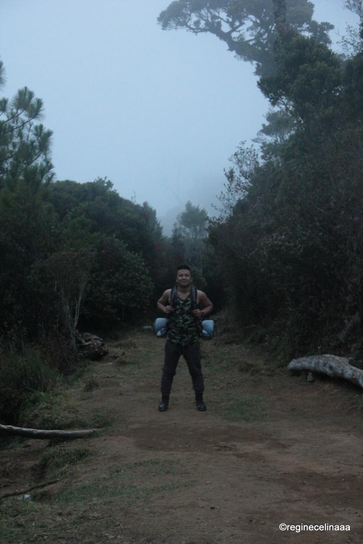 reginecelinatakestheworld Celine Mamangon hikes Mt Pulag 2015 (19)
